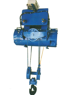 Wire Rope Hoist-Conventional
